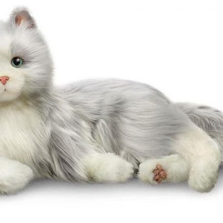 Companion Pet Cat (Silver with White Mitts)