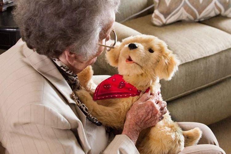 Senior holding Companion Pet Pup